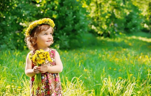 Картинка лето, трава, ребенок, summer, одуванчики, flowers, dandelions, child, little girl, маленькая девочка