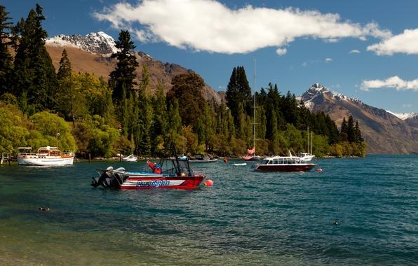 Картинка лес, горы, озеро, берег, яхты, лодки, Новая Зеландия, катера, Queenstown, Lake Wakatipu