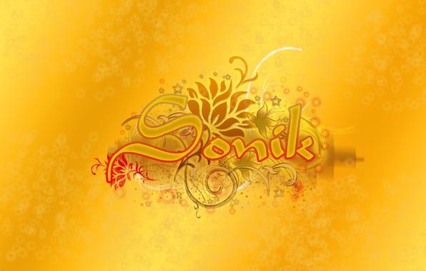 Картинка желтый, надпись, вектор, Sonik