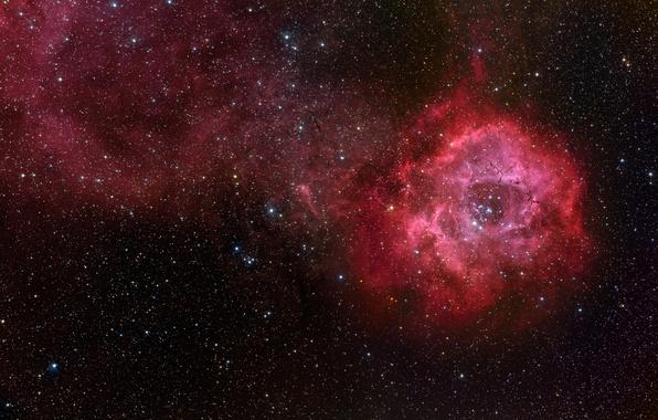 Картинка звезды, туманность, Розетка, NGC 2244, NGC 2237
