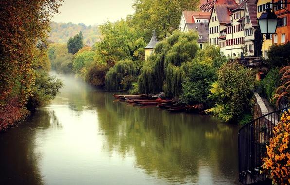 Картинка осень, деревья, город, туман, река, здания, дома, Германия, Deutschland, Tübingen, Тюбинген