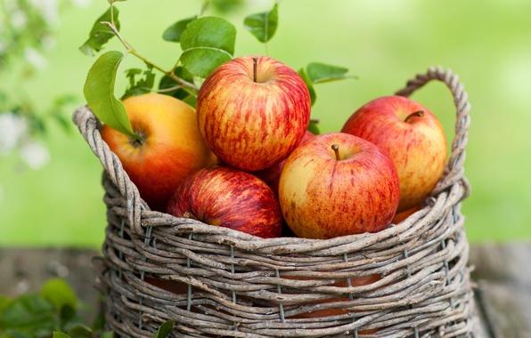 Картинка осень, листья, корзина, яблоки, фрукты