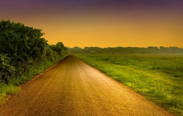 Картинка дорога, зелень, небо, трава, листья, деревья, пейзаж, природа, фон, дерево, widescreen, обои, листва, вечер, дорожка, …