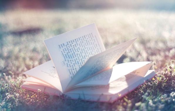 Картинка нежный, книга, book