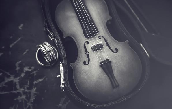 Картинка макро, скрипка, футляр