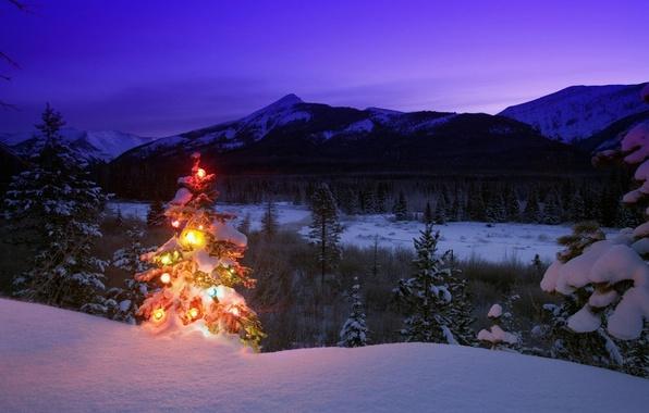 Картинка зима, снег, деревья, горы, природа, игрушки, елка, вечер, Новый год, сумерки