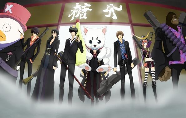Картинка Anime, one piece, gintama, gintoki, hijikata