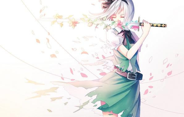 Картинка девушка, цветы, оружие, катана, аниме, лепестки, сакура, арт, touhou, konpaku youmu, ling, vivianling