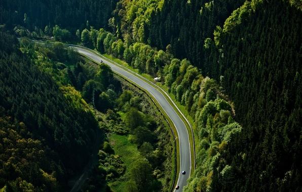 Картинка лес, трасса, автомобили, Nurburgring