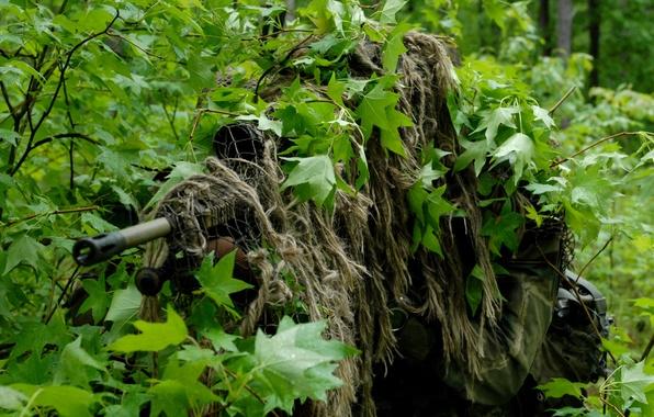 Картинка лес, оружие, листва, укрытие, маскировка, снайпер, прицел, кусты