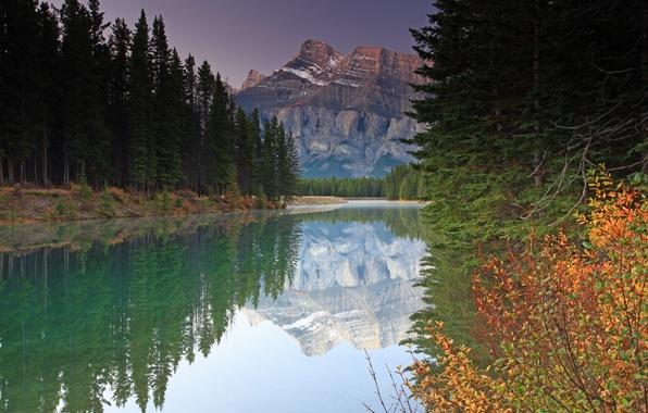 Картинка осень, лес, природа, река, гора