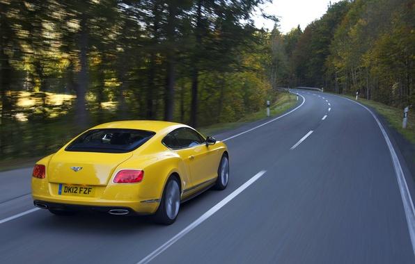 Картинка Bentley, Continental, Дорога, Желтый, Лес, Континенталь, Люкс, В Движении
