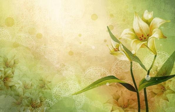 Картинка цветы, узоры, рисунок, вектор, арт