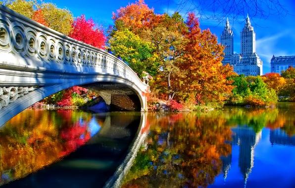 Картинка осень, небо, листья, деревья, пейзаж, мост, Нью-Йорк, США, центральный парк