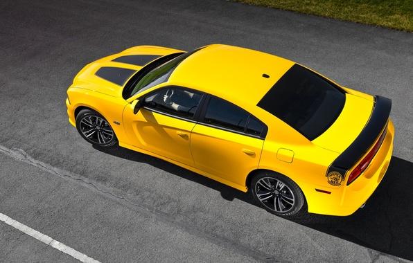 Картинка Авто, Желтый, Додж, Асфальт, Dodge, SRT8, Charger, Вид сверху, Super Bee