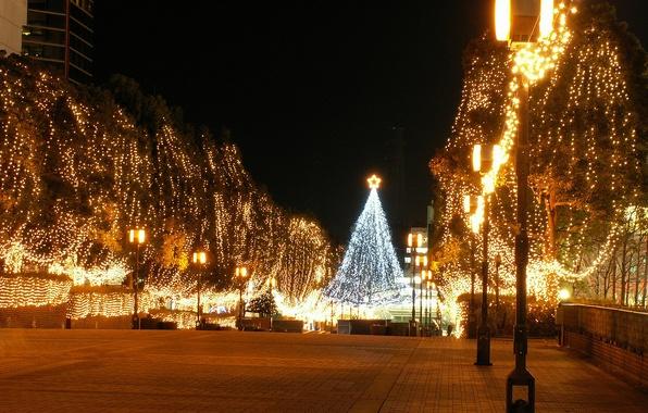 Картинка ночь, желтый, город, огни, елка
