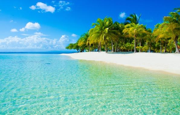 Картинка песок, море, пляж, небо, облака, природа, пальмы