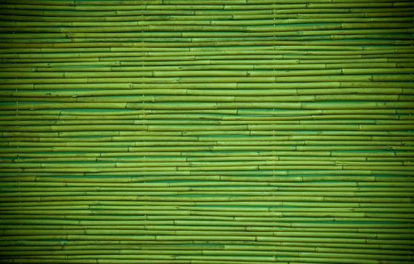 Картинка green, wood, pattern, bamboo
