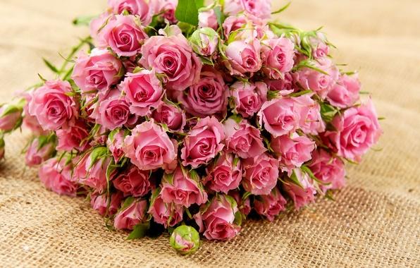 Картинка листья, цветы, розы, букет, лепестки, розовые, бутоны