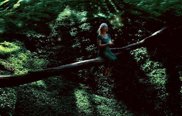 Картинка зелень, лес, девушка, дерево, платье, sometimes