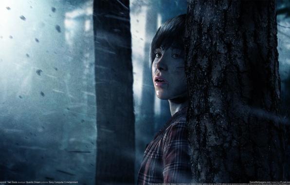 Картинка лес, взгляд, девушка, деревья, страх, дождь, GameWallpapers, PS3, Beyond: Two Souls