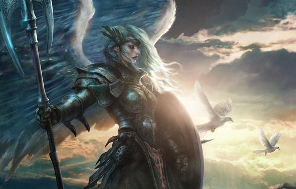 Картинка девушка, птицы, оружие, крылья, ангел, арт, голуби, щит