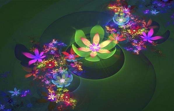 Картинка свет, фон, Цветы, зелёный