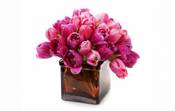 Картинка цветы, букет, тюльпаны, ваза, fresh, flowers, tulips, purple, bouquet