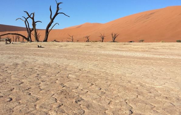 Картинка песок, пустыня, Африка, Намибия