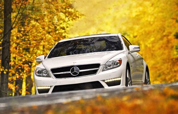 Картинка осень, белый, листья, деревья, Mercedes-Benz, суперкар, мерседес, передок, amg, цл63, cl63, амг