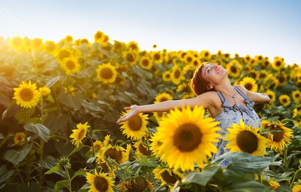 Картинка поле, небо, девушка, радость, счастье, подсолнухи, цветы, желтый, улыбка, фон, widescreen, обои, настроения, подсолнух, позитив, …