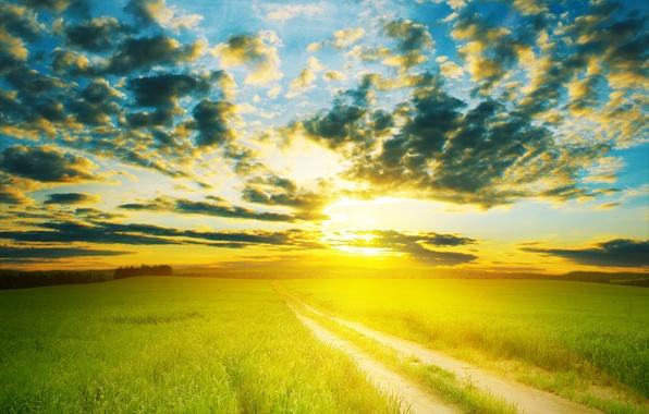 Дорога зелёный луг тёплое обои фото