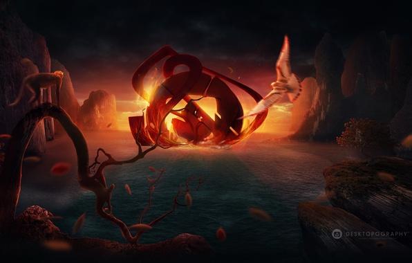 Картинка море, листья, закат, огонь, птица, эмблема, desktopography, мартышка