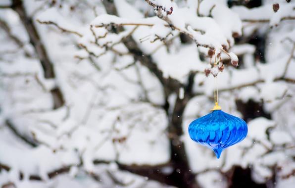 Картинка зима, снег, ветки, дерево, игрушка, Новый Год, Рождество, Christmas, синяя, праздники, New Year, новогодняя, елочная