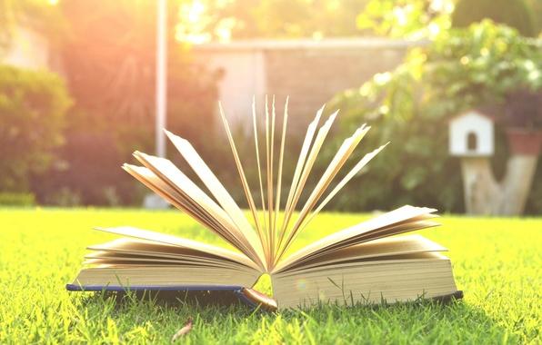 Картинка зелень, трава, деревья, фон, дерево, widescreen, обои, настроения, размытие, луг, книга, wallpaper, книжка, широкоформатные, страницы, ...