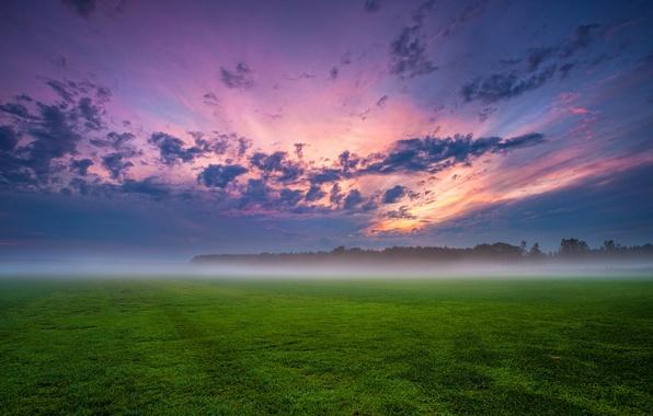Картинка поле, небо, трава, облака, деревья, закат, тучи, туман, вечер, Германия, дымка, синее