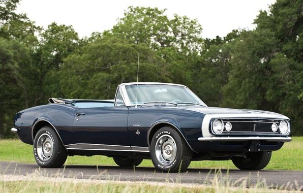 Картинка дорога, деревья, Chevrolet, Кабриолет, Камаро, Шевроле, Camaro, 1967, передок, Muscle car, Convertible, Мускул кар