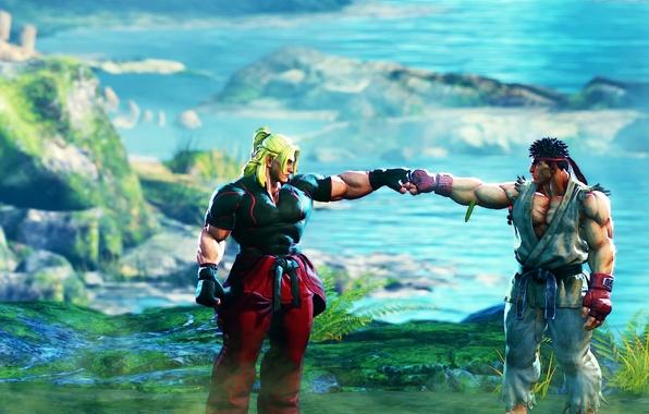 Картинка фон, игра, бойцы, Street Fighter V