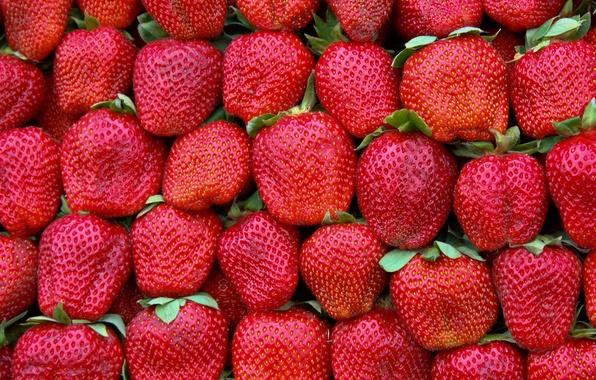 Картинка green, red, pattern, strawberries