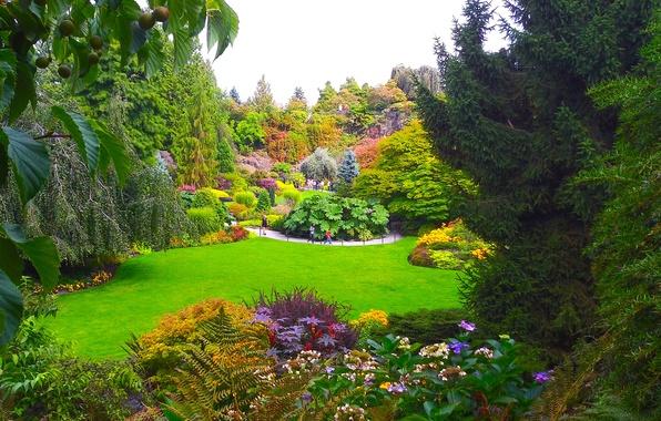 Картинка зелень, трава, деревья, цветы, дизайн, сад, Канада, Ванкувер, кусты, Queen Elizabeth Garden