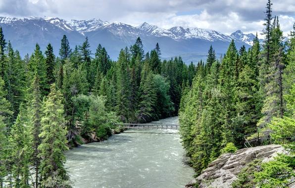 Картинка лес, небо, облака, снег, деревья, горы, мост, скала, река, ель, поток, Alberta, Canada, мостик, Maligne …