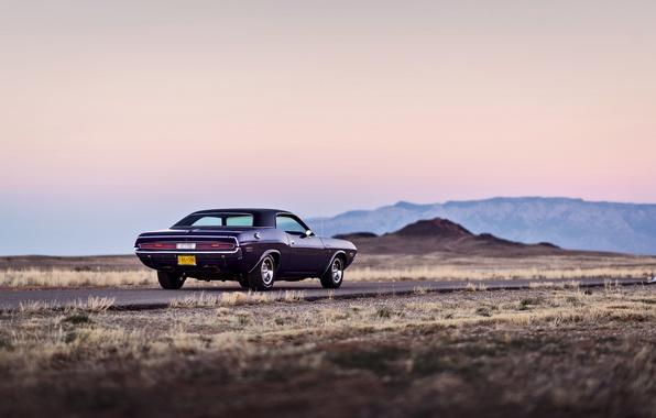 Картинка дорога, горы, колеса, сзади, Dodge, Challenger, сумерки, задние фонари