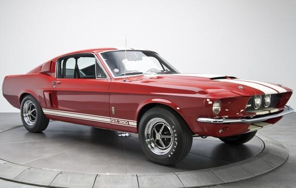 Картинка Mustang, Ford, Shelby, Форд, Мустанг, 1967, передок, Muscle car, GT350, Мускул кар