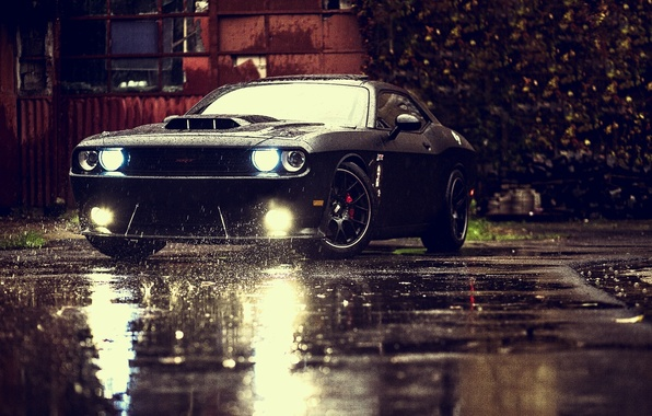 Картинка Muscle, Dodge, Challenger, Car, Front, Black, Rain, Tuning, SRT, Ligth