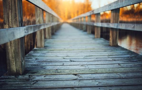 Картинка мост, река, фон