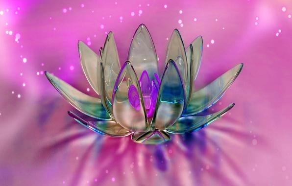 Картинка цветок, стекло, абстракция, лепестки, объем