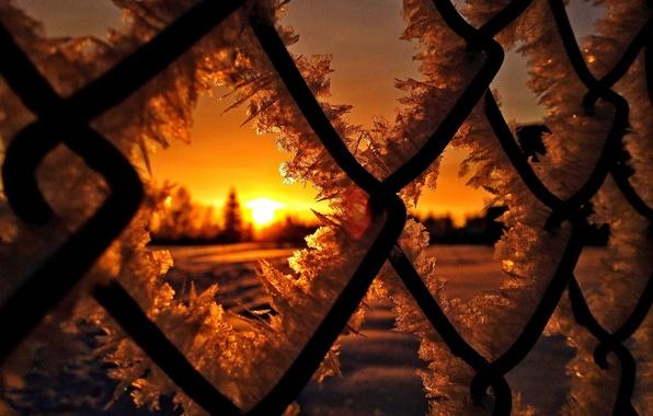 Картинка лед, зима, солнце, снег, закат, природа, восход, мороз, ice, nature, sunset, winter, snow, sun, sunrise, …