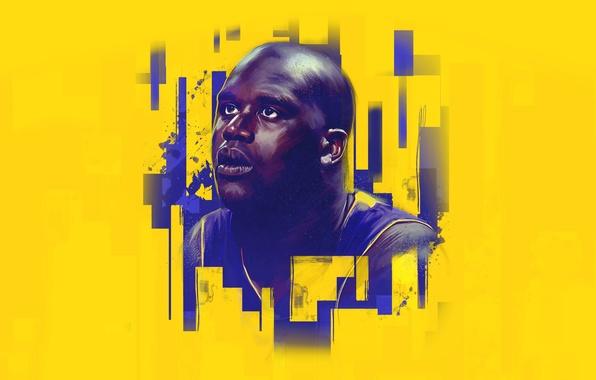 Картинка Спорт, Лицо, Баскетбол, Los Angeles, NBA, Lakers, Игрок, Shaquille O'Neal, Шакил О'Нил