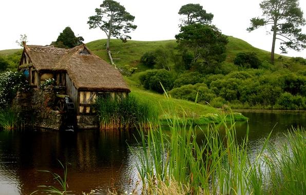 Картинка трава, вода, цветы, дом, пруд, холмы, мельница