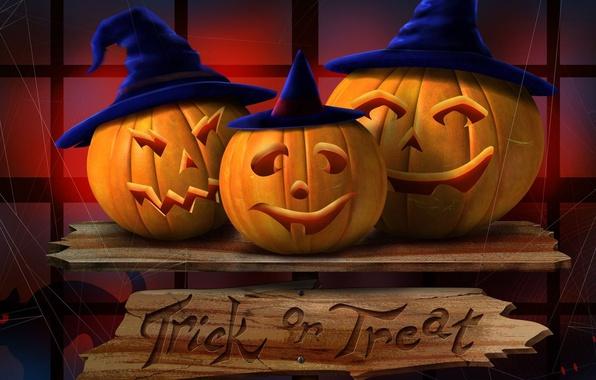 Картинка ночь, доски, паутина, тыквы, три, Halloween, хэллоуин, черный кот, светильник Джека, шляпа ведьмы, Trick-or-Treat